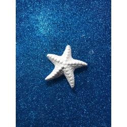stella marina media in gesso ceramico profumato per il fai da te
