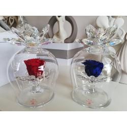 Campana vetro con doppio anemone in cristallo e rosa eterna