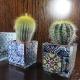 Vasetto pota piante ceramica con maioliche e piantina grassa
