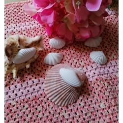 Conchiglia - conchiglie in gesso ceramico profumato