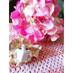 Stella marina, cavalluccio marino, granchio, conchiglia aragosta gesso ceramico profumato