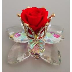 Fiore doppio cristallo con corona di strass e rosa eterna