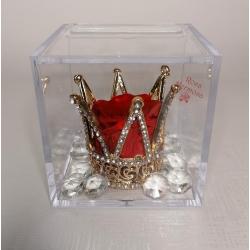 Scatolina plexi con corona di strass , diamantini e rosa eterna