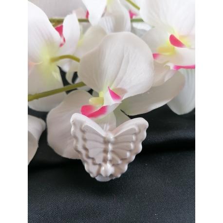 Farfalla ricamo gesso ceramico fai da te